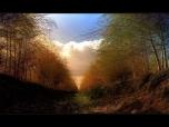 landscape_0002