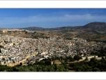 panorama_2_v1_ms