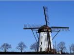 windmills_0017